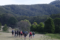 Low res image of a group of people wearing large hiking backpacks doing the Beeripmo walk
