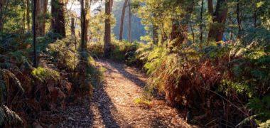 autumn-cave-hill-creek